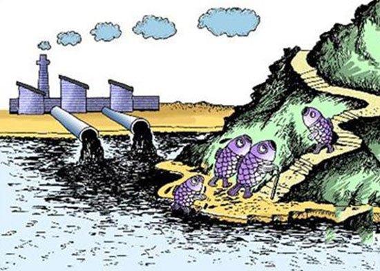 水污染的四大危害 你究竟知道多少 - 壹讀