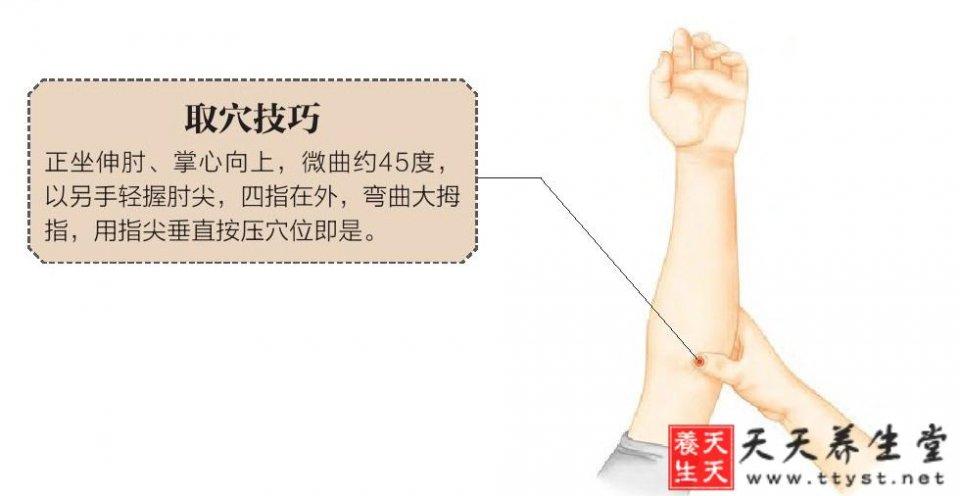 【曲澤穴】的作用位置功效 心病需要曲澤醫 - 壹讀