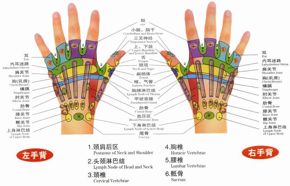 最詳細的手掌穴位圖解大全—小手掌大經絡 - 壹讀