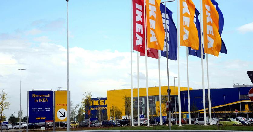 Licenziati Per Giusta Causa Dieci Dipendenti Ikea Il Sole