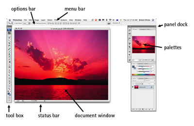 The Photoshop workspace