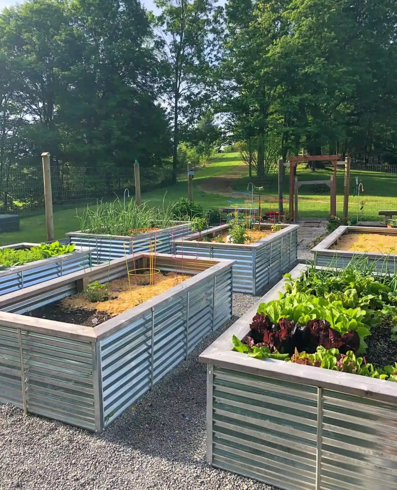 Galvanized Steel Raised Garden Bed Plans And Tutorial Wholefully