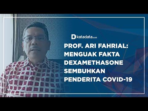Menguak Fakta Dexamethasone Sembuhkan Penderita Covid-19   Katadata Indonesia