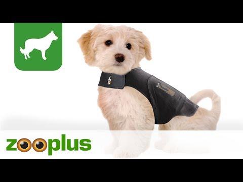Beruhigungsweste für Hunde | NEU | zooplus