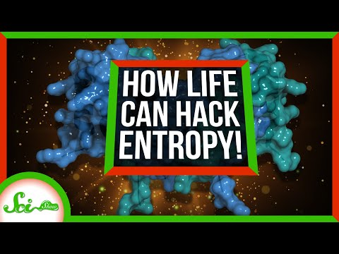 How Cells Hack Entropy to Live