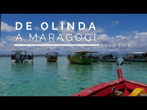 ROAD TRIP   De Olinda á Maragogi