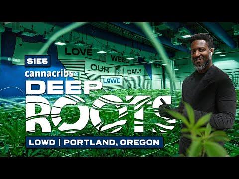 Craft Cannabis Brand in Portland, Oregon: LOWD