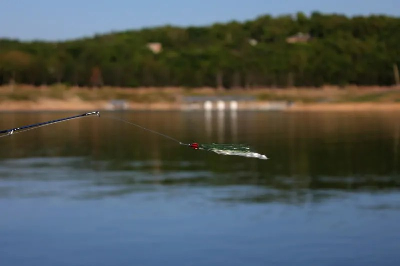 Fishing report 4 12 12 the ozark fly fisher journal for Bull shoals lake fishing report