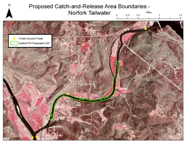 Proposed 2010 C+R Zone for Norfork Tailwater