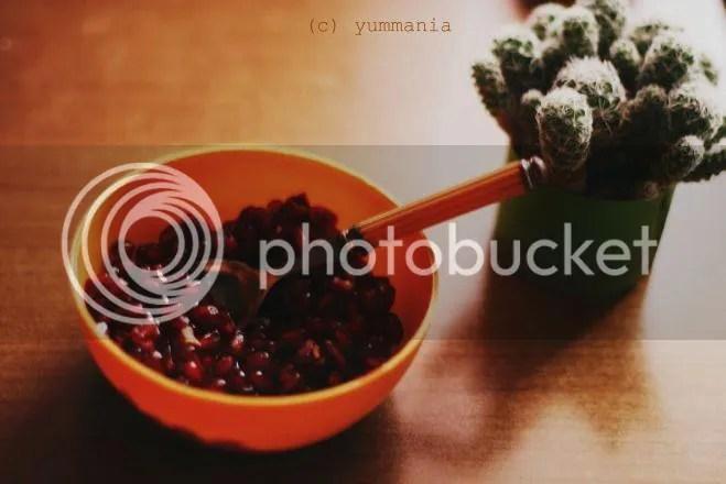 photo 11416_540411009325146_1061110897_n_zpsd1f5b482.jpg