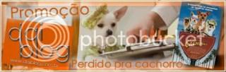 Promoção Perdido pra cachorro - Daiblog