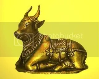 nandi.jpg picture by movimentoequi