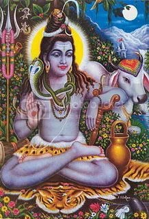 pic_shiva_a_27.jpg picture by movimentoequi