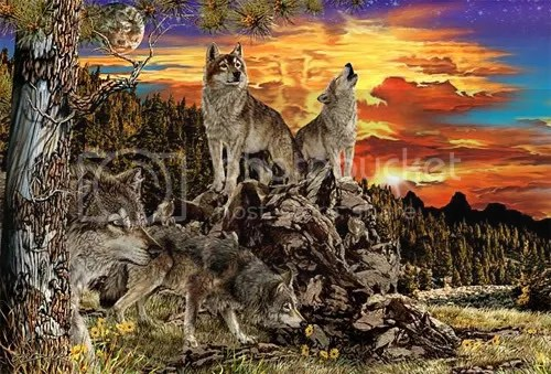 https://i1.wp.com/i207.photobucket.com/albums/bb234/vurdlak8/illusions/17wolves.jpg