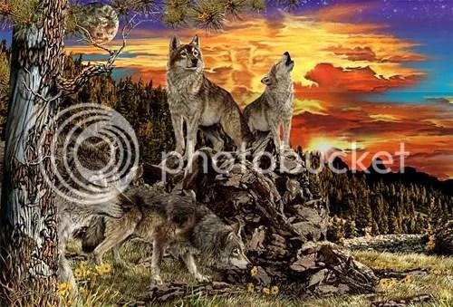 https://i1.wp.com/i207.photobucket.com/albums/bb234/vurdlak8/illusions/17wolves.jpg