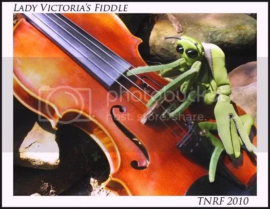 Mantis on the move Victoria's Fiddle