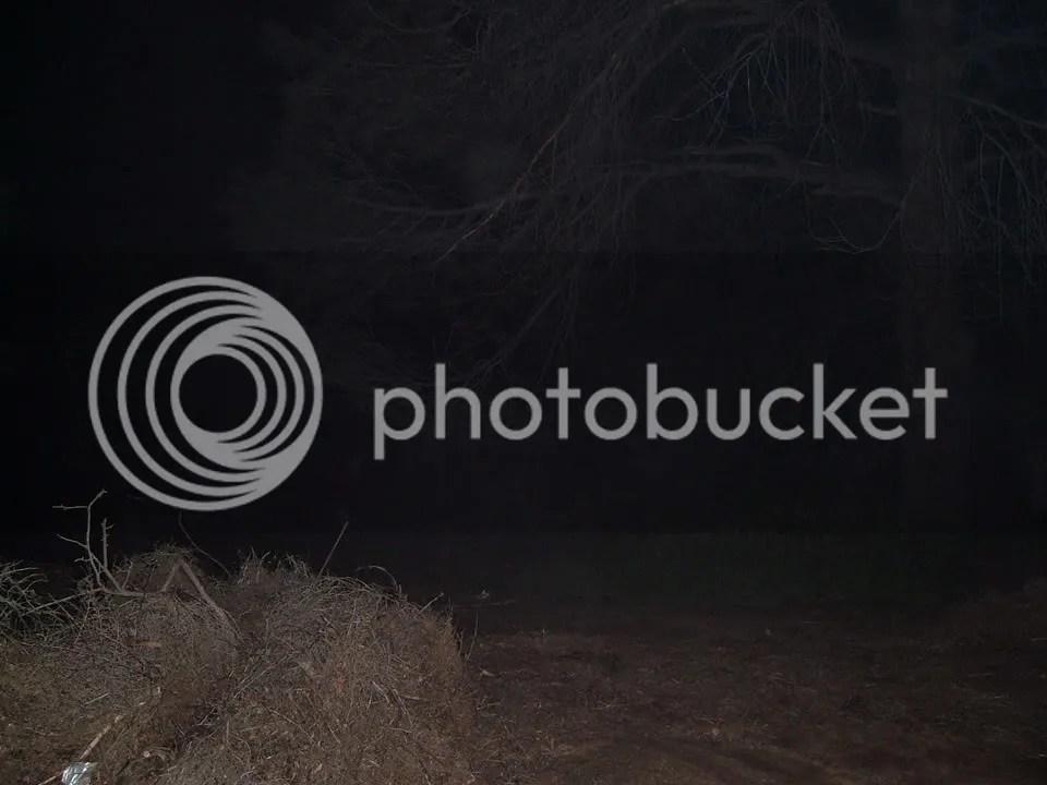 photo 9001.jpg