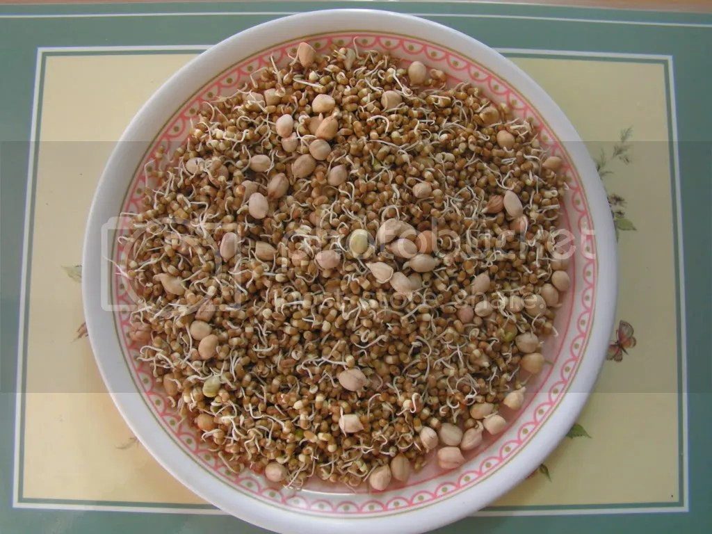 Sprouted Matki & Peanuts