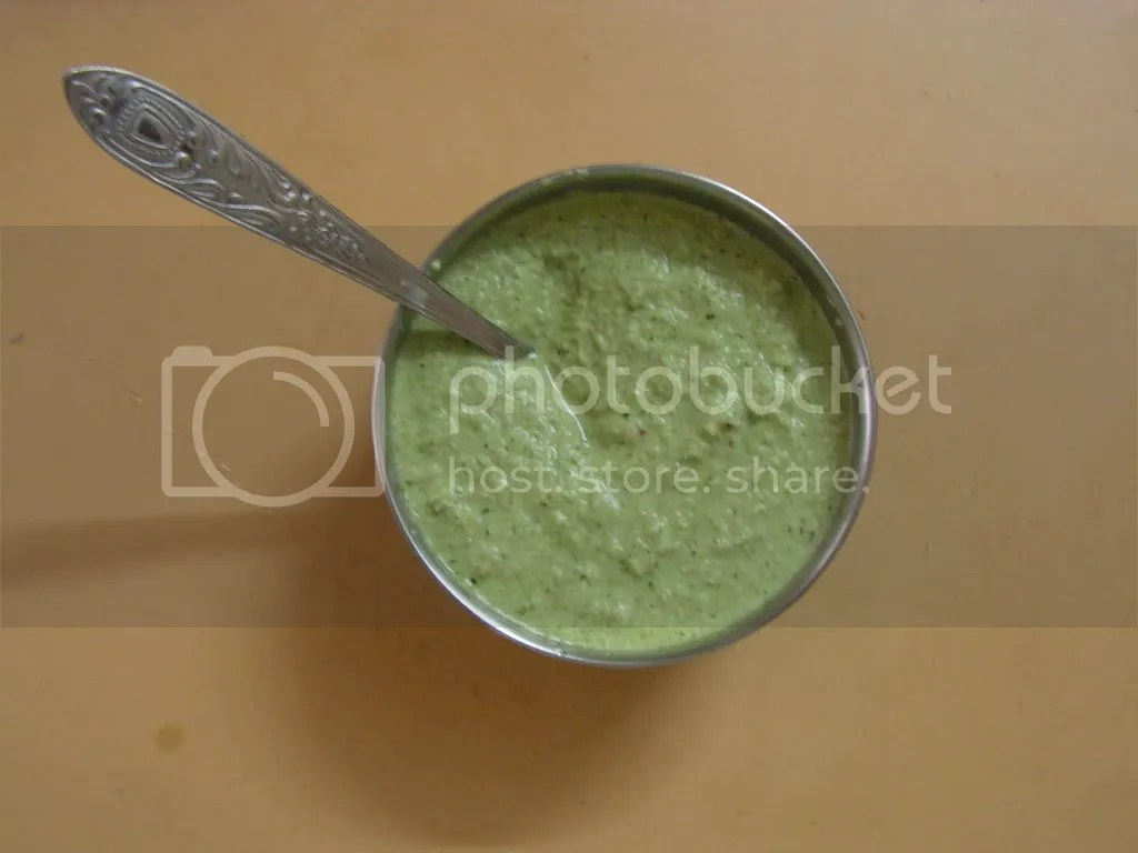 Ready to serve Green chutney
