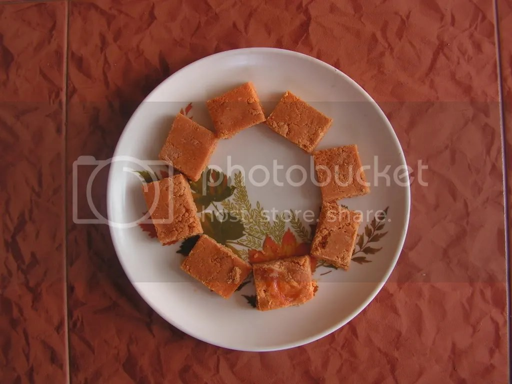 Ready to serve Tomato Burfi