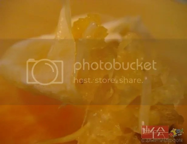 Mandarin Oranges 1