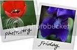 PhotoStory Friday