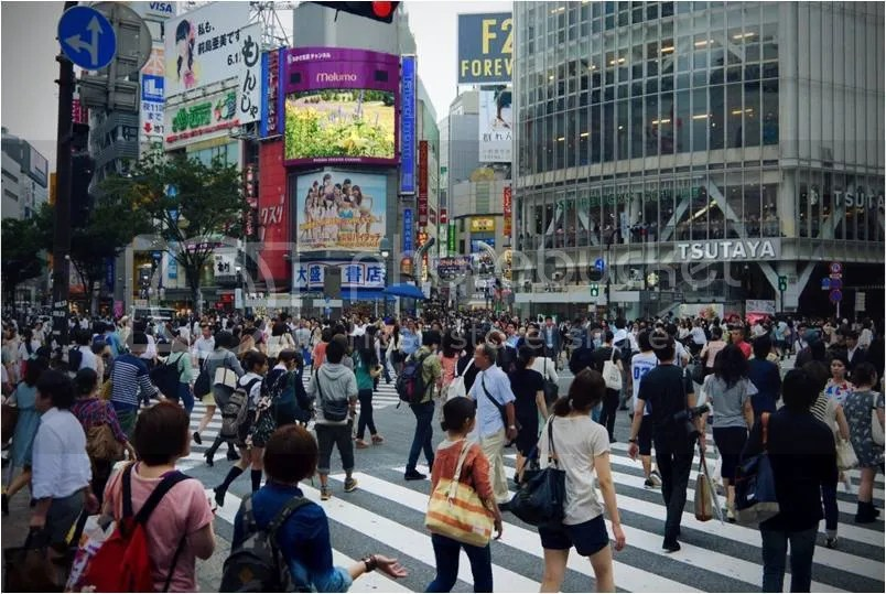 photo Picture1_zpsdmwx4qpj.jpg