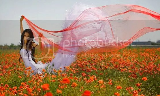 photo flying_zpszkrfaatu.jpg