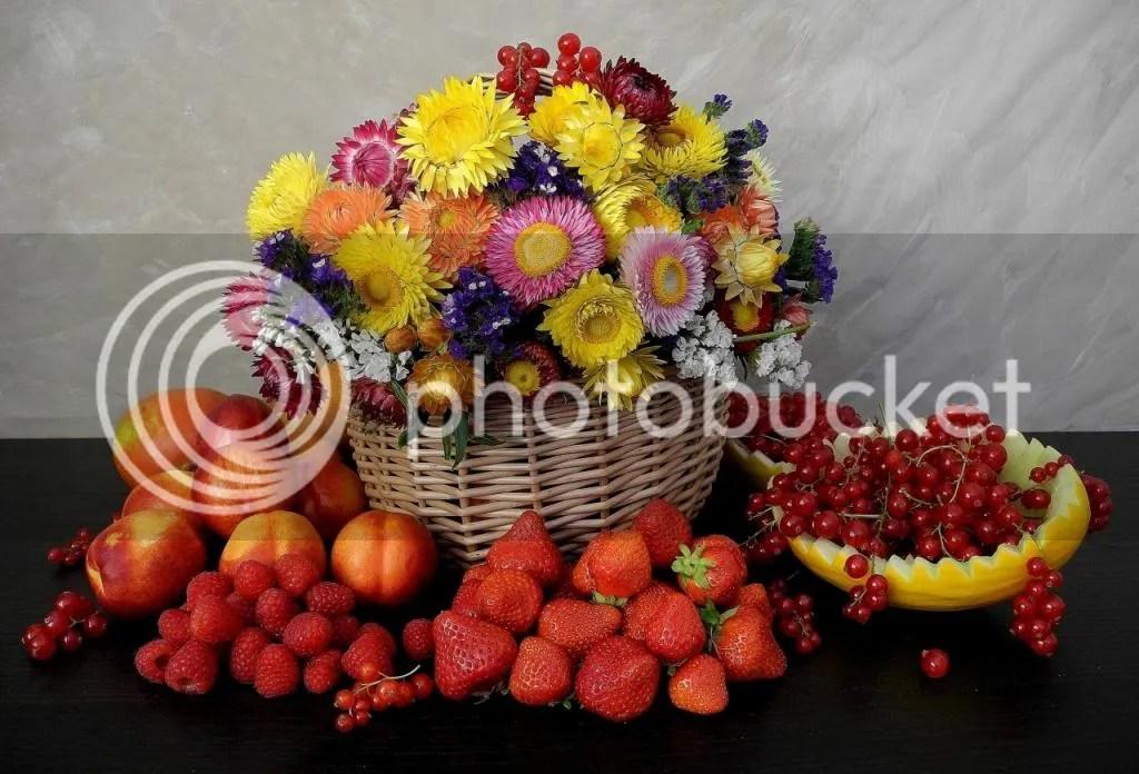 photo Fruit-flower_zpsbcf09ce8.jpg