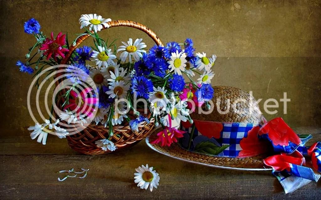 photo Vase 13_zpsglk93zdz.jpg
