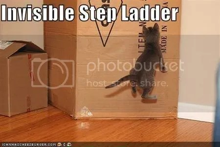 invisible step ladder