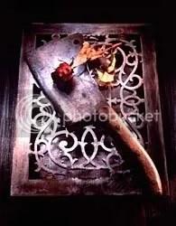 Trandafir de carne