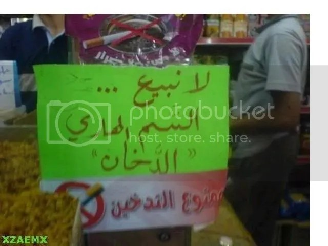 GetAttachment11.jpg picture by elhanem