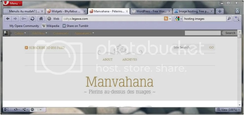 WordPress 3.1 Navigation Bar