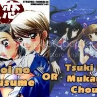 Vote For Your New Doujinshi Translation Project!