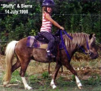 Sierra riding LP Painted StuffNpuf