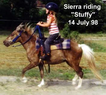 Sierra riding LP Painted StuffNpuf (Stuffy)