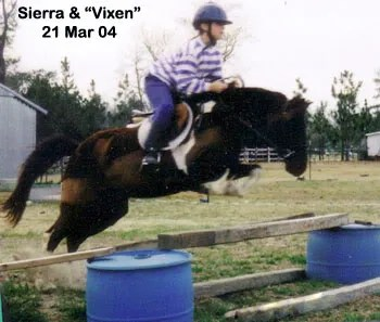 Vixen & Sierra practice at home - 2004