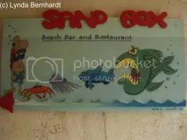 Food chain (c) Lynda Bernhardt