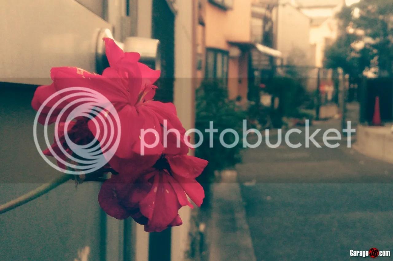 photo IMG_20150114_094826.jpg