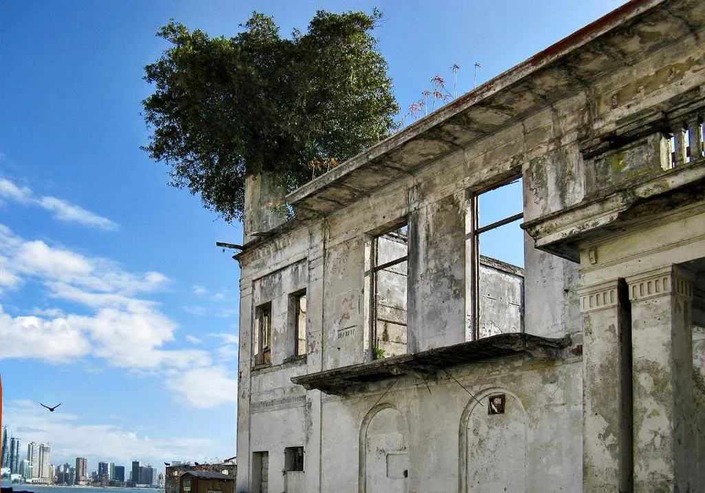The dilapidated condition of the historic building.  Notice the vegetation growing on top of the structure.