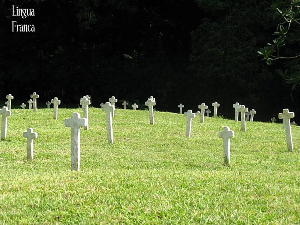 View of thousands of small white crosses with nameless victims of tropical disease during the early stages of the construction of the Panama Canal.  (Credit:  Omar Upegui R.)