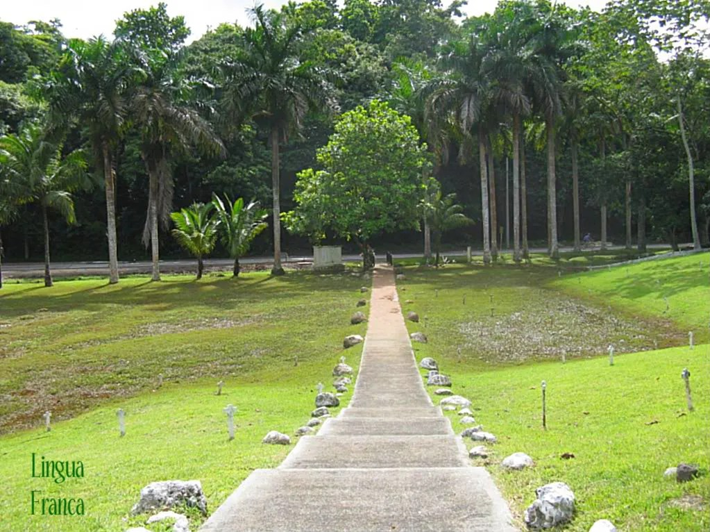View of the cement walkway used by visitors to exit from the French Cemetery.  (Omar Upegui R.)