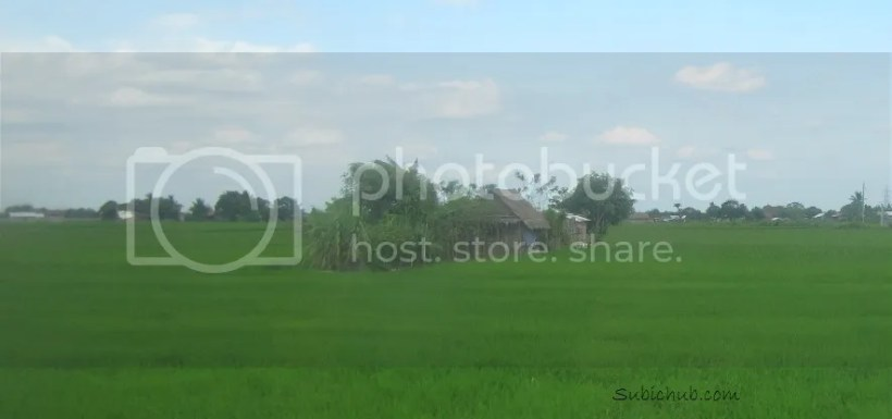 photo bataan2_zpsf5019a44.jpg