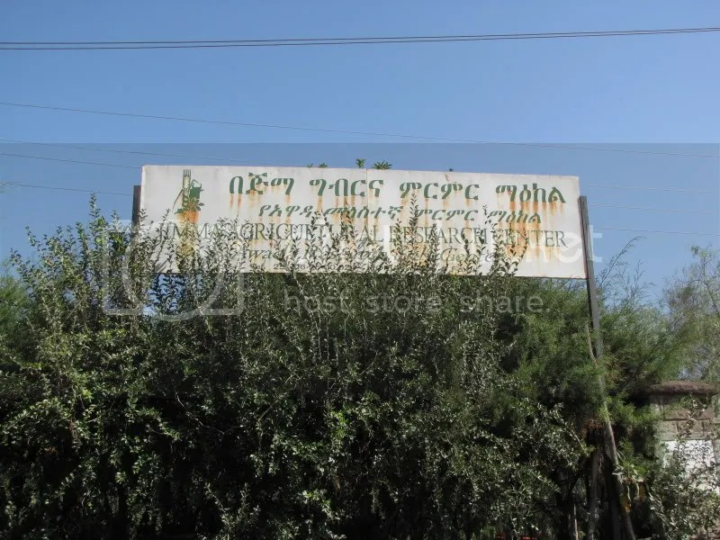 Jimma Research Center