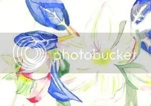 flowers sailor aurora deviantart