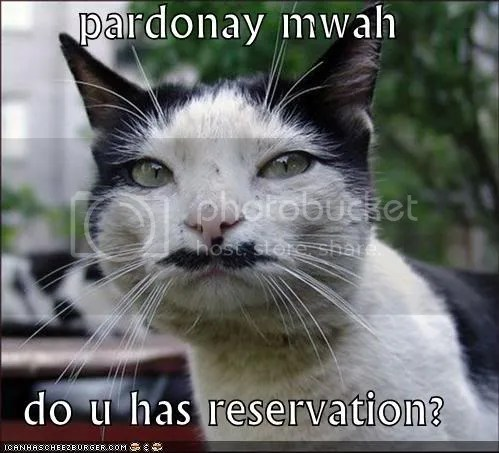 DO YOU HAS CAT RESERVATION
