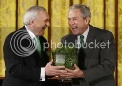 Bertie, Bush, Bowl