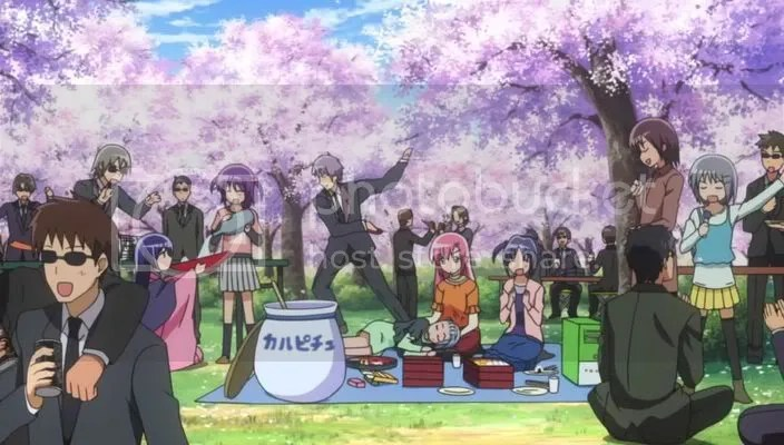 Rich peoples Hanami party.