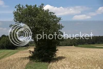 Een stukje landschap aan de Meinweg
